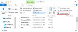 Hidden Files in File Explorer