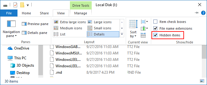 Hidden Files in File Explorer