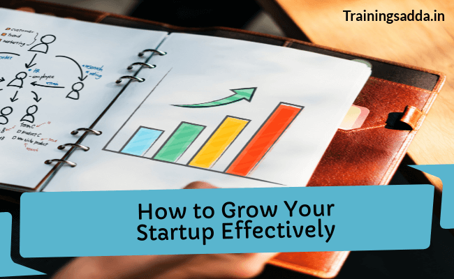 How to Grow Your Startup Business Effectively