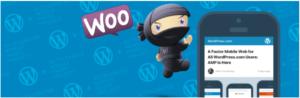 AMP Woocommerce WordPress Plugins