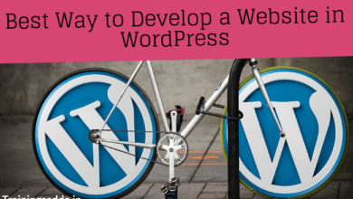 Best Ways to Develop a Website in WordPress