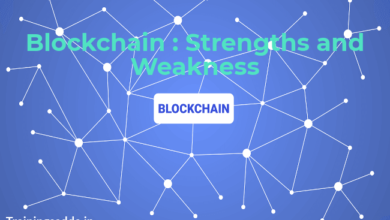 What Are The Strengths and Weaknesses of The Blockchain?