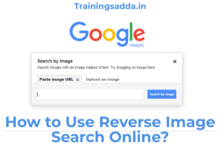 How to Use Reverse Image Search Online?